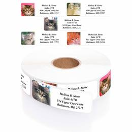 Photo Kitties Designer Assorted Rolled Address Labels with Elegant Plastic Dispenser
