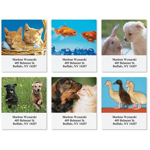 Animal Buddies Assorted Sheeted Address Labels