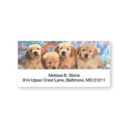 Cute Golden Retriever Puppies Sheeted Address Labels