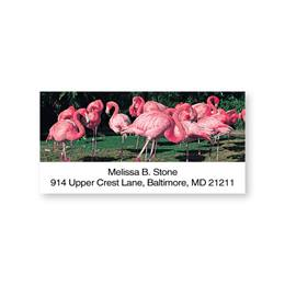 Flurry of Flamingos Sheeted Address Labels