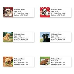 Cute Canine Characters Assorted Sheeted Address Labels