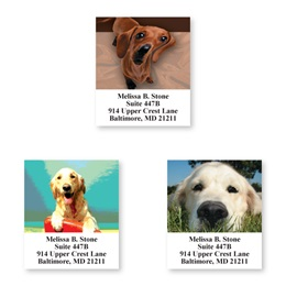 Canine Faces Assorted Sheeted Address Labels