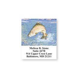 Fishing Lure Splash Sheeted Address