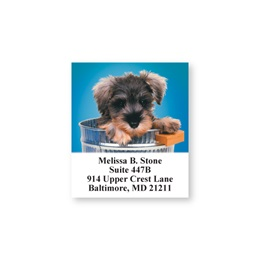 Doggone Cute Blue Sheeted Address Labels