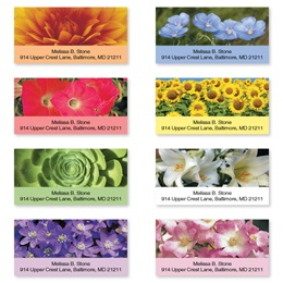 Nature's Beautiful Colors Assorted Sheeted Address Labels